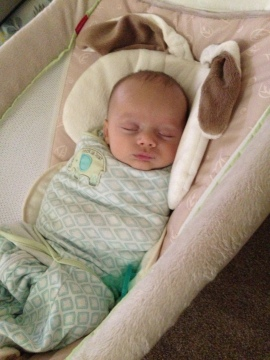 Taking a little snooze in the Rock 'n Play, swaddled in his sleepsack, paci never too far away.